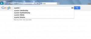 spadek google 3